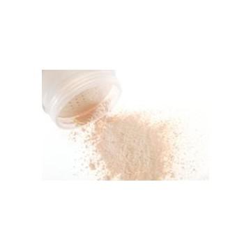 Shell Polvos Minerales Traslúcidos MUD